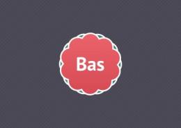 Bas - Bedrijfsopvangteam